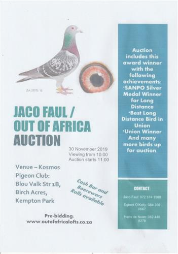 Our partner Jaco Faul has purchased a new house with little space for stock and race lofts. He is scaling his own stock birds down drastically. The pigeons shall be loaded in pre-bidding soon. See attached venue date for final auction.